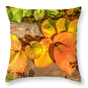 August Leaves Throw Pillow by Jim Sauchyn