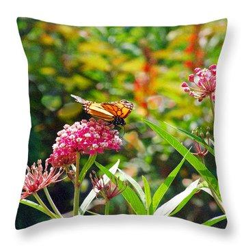 August Monarch Throw Pillow