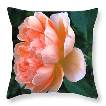 Throw Pillow featuring the photograph August Rose 09 by Joyce Dickens
