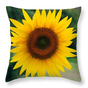 Throw Pillow featuring the photograph August Sunflower by Jeff Severson