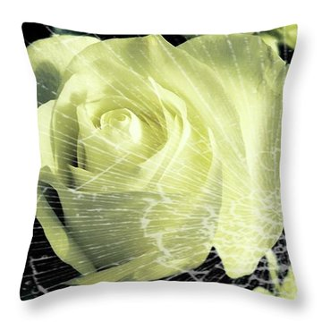 Aunt Edna's Rose Throw Pillow by Rachel Hannah