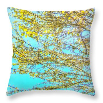 Throw Pillow featuring the photograph  Aura Of Springtime by Connie Handscomb