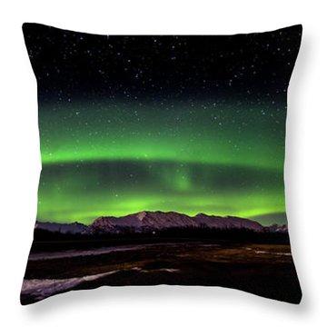 Aurora Spiral Throw Pillow