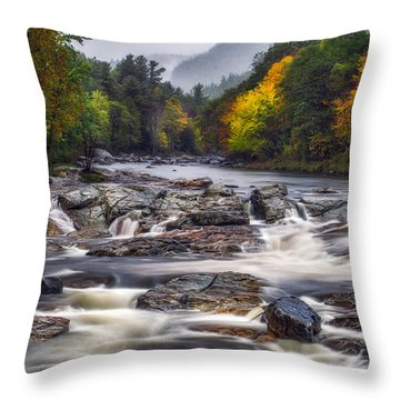 Throw Pillow featuring the photograph Ausable Cascades by Mark Papke
