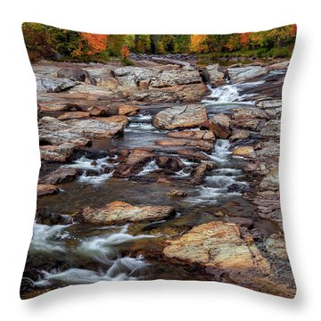 Throw Pillow featuring the photograph Ausable by Mark Papke