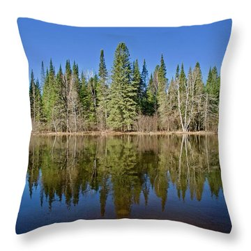 Ausable Reflections 1768 Throw Pillow by Michael Peychich