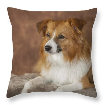 Aussi Pose 1 Throw Pillow