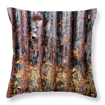 Aussie Galvanised Iron #12 Throw Pillow