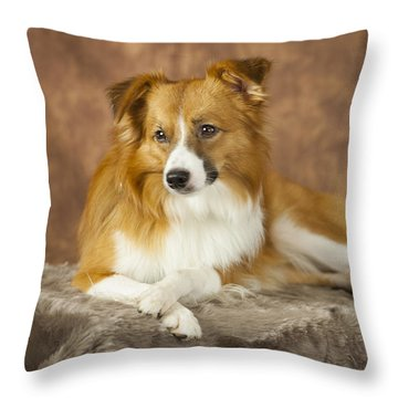 Aussie Pose 4 Throw Pillow