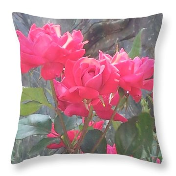 Austin Roses Throw Pillow