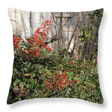Throw Pillow featuring the photograph Austin Winter Berries by Linda Phelps