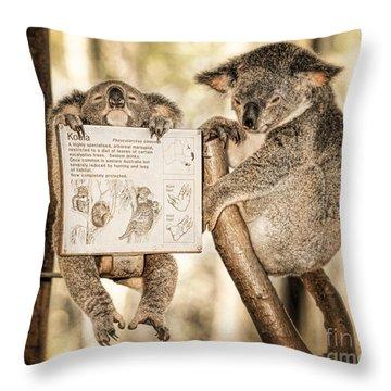 Throw Pillow featuring the photograph Koala Australia  by Juergen Held