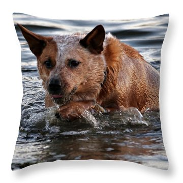 Out For A Swim Throw Pillow
