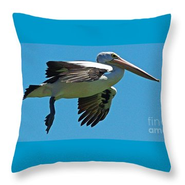 Australian Pelican In Flight Throw Pillow by Blair Stuart