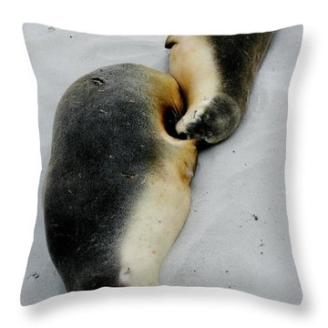 Australian Sea Lions Throw Pillow
