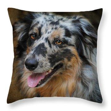 Australian Shepherd Portrait Throw Pillow by Jai Johnson