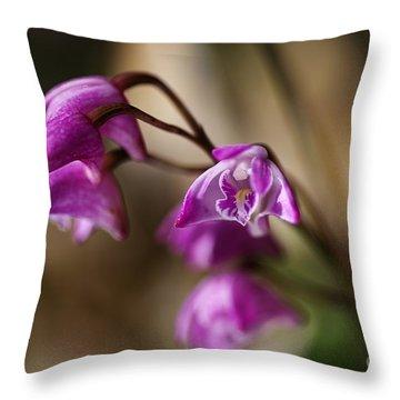 Australia's Native Orchid Small Dendrobium Throw Pillow