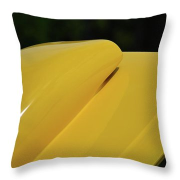 Throw Pillow featuring the photograph Auto Artsy by John Schneider