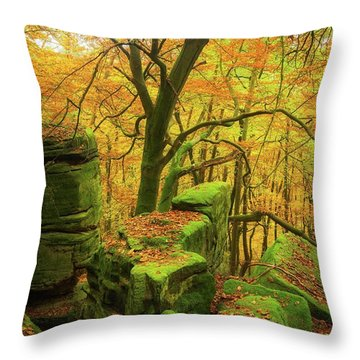 Automnal Glow Throw Pillow by Maciej Markiewicz