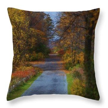 Autumn Wanderings Throw Pillow