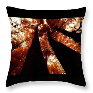 Autumn Canopy Abstract Throw Pillow