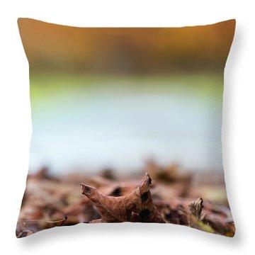 Autumn Abstract Throw Pillow