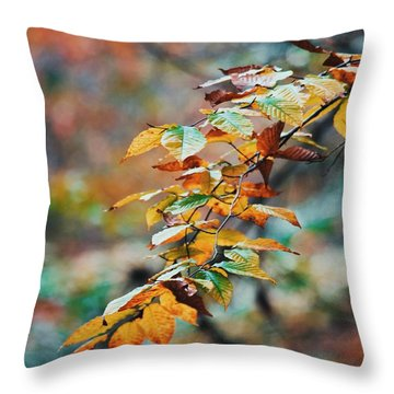 Throw Pillow featuring the photograph Autumn Aesthetics by Parker Cunningham