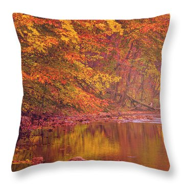 Autumn And The Creek Throw Pillow