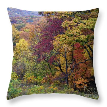 Throw Pillow featuring the photograph Autumn Arrives In Brown County - D010020 by Daniel Dempster