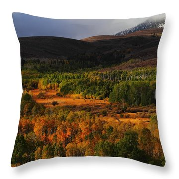 Autumn Aspen At Conway Summit In The Eastern Sierras Throw Pillow by Jetson Nguyen
