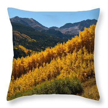 Throw Pillow featuring the photograph Autumn Aspen Near Castle Creek by Cascade Colors