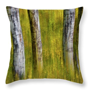 Throw Pillow featuring the photograph Autumn Aspen Recollections by John De Bord