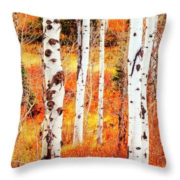 Throw Pillow featuring the photograph Autumn Aspens by David Millenheft