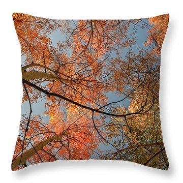 Autumn Aspens In The Sky Throw Pillow