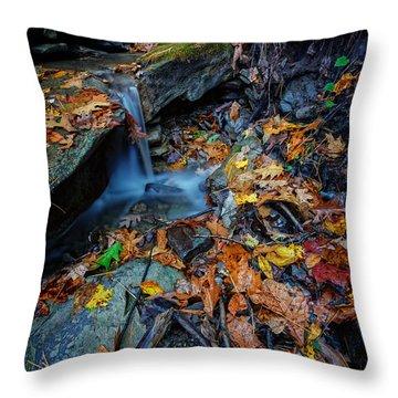 Autumn At A Mountain Stream Throw Pillow by Rick Berk