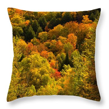 Autumn At Acadia Throw Pillow
