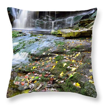 Autumn At Elakala Throw Pillow