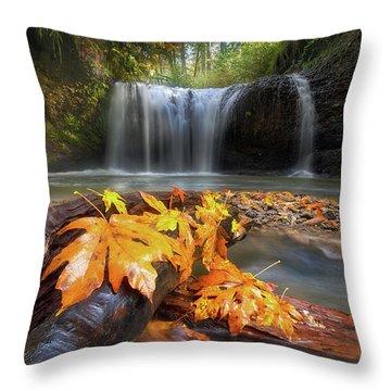 Autumn At Hidden Falls Throw Pillow by David Gn