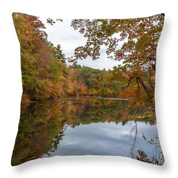 Autumn At Hillside Pond Throw Pillow