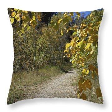 Autumn At Iron Creek Throw Pillow