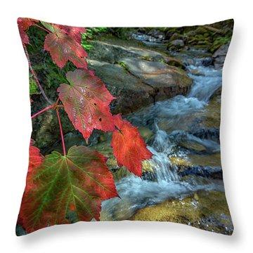 Autumn At Katahdin Stream Throw Pillow