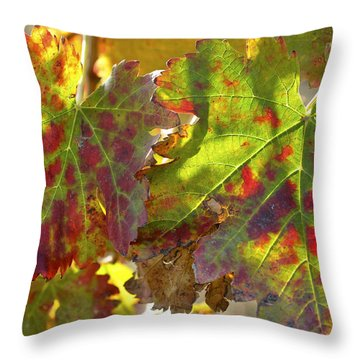 Throw Pillow featuring the photograph Autumn At Lachish Vineyards 2 by Dubi Roman