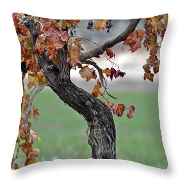 Throw Pillow featuring the photograph Autumn At Lachish Vineyards 3 by Dubi Roman