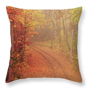 Autumn At Lake Harriet  Throw Pillow