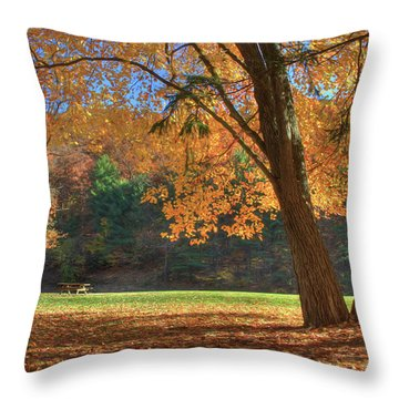 Throw Pillow featuring the photograph Autumn At Lykens Glen by Lori Deiter