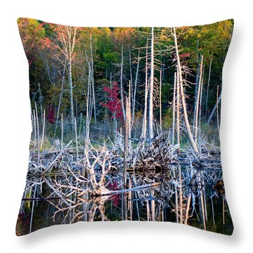 Autumn At Moosehead Bog Throw Pillow