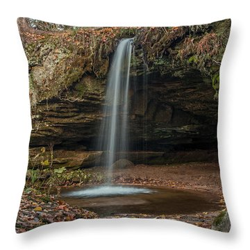 Autumn At Scott Falls Throw Pillow