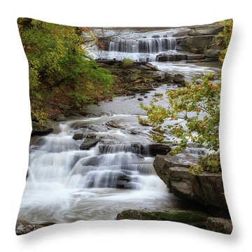 Throw Pillow featuring the photograph Autumn At The Falls by Dale Kincaid