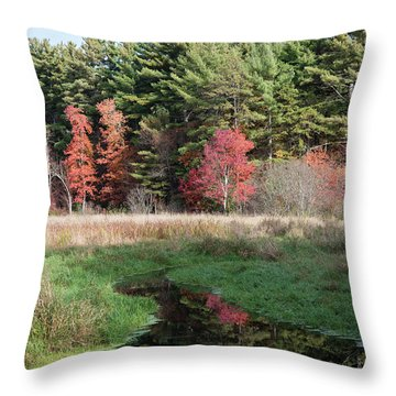 Autumn At The River Throw Pillow