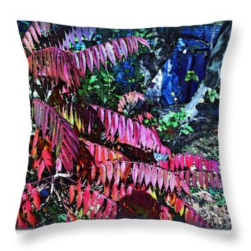 Throw Pillow featuring the photograph Autumn At The Taverne by Joan  Minchak